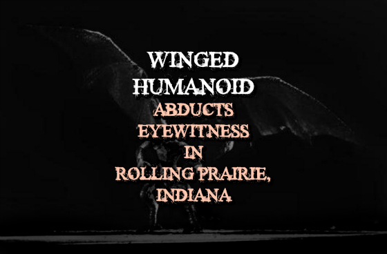 Winged Humanoid Abducts Eyewitness in Rolling Prairie, Indiana