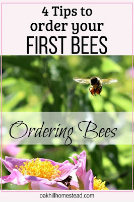 Four tips to help you order your first package of honey bees.