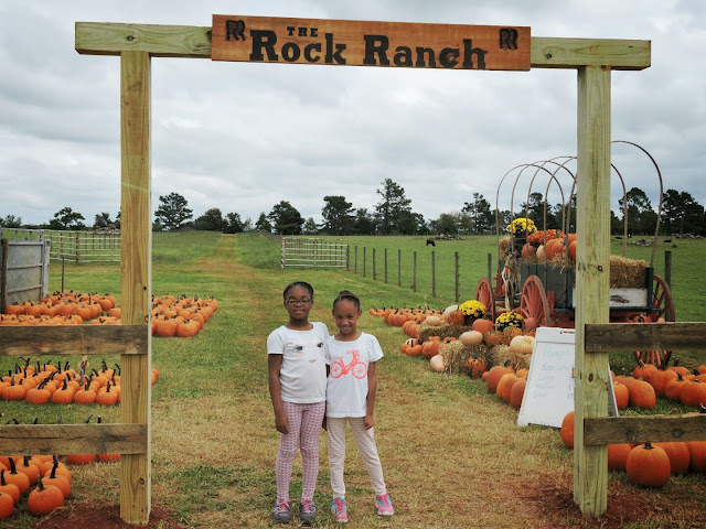 ATLANTA: Come to National Pumpkin Destruction Day at The Rock Ranch  via  www.productreviewmom.com