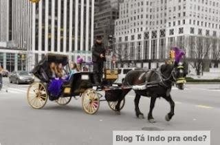 carruagem em Nova York