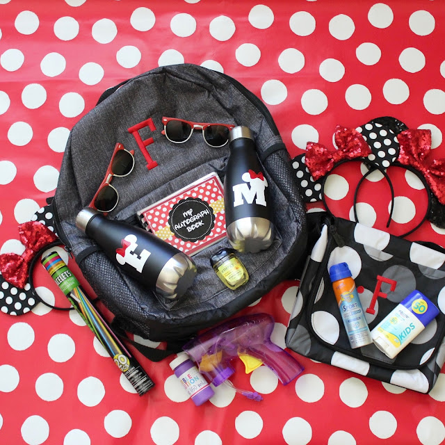 What you need in Your Disney Park Bag