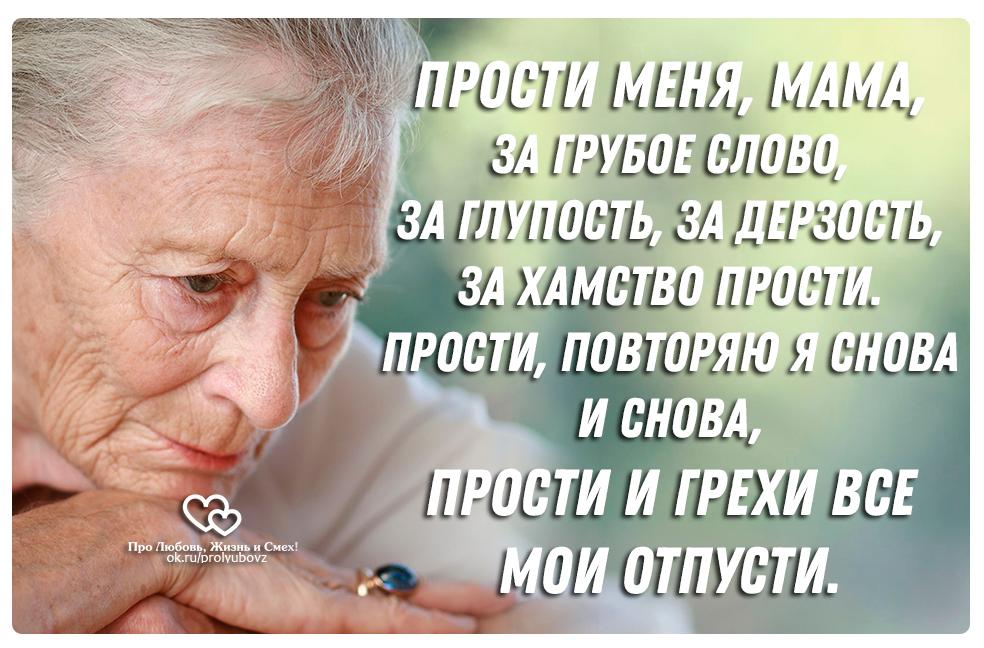 Мишка тедди, открытка прости мамочка