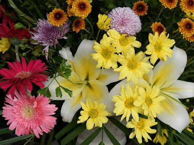 Bildergebnis für very beautiful flowers in September