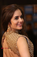 Actress Model Sarah Hopkins Latest Pos in Lehenga Choli at SIIMA Short Film Awards 2017 .COM 0162.JPG
