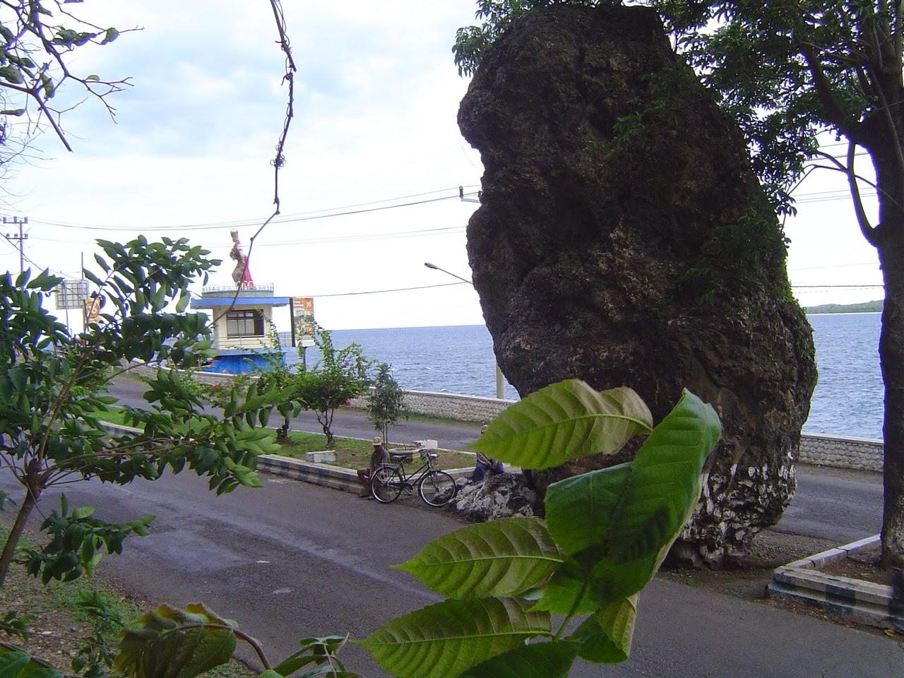 Tempat Wisata Di Banyuwangi,Surga Wisata Jawa Timur