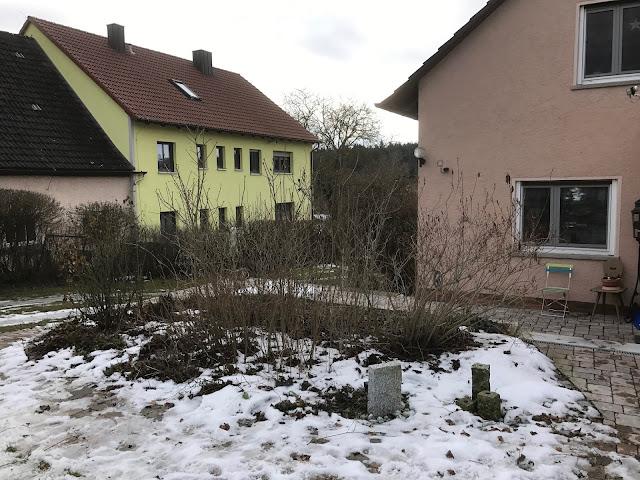 endlich wieder einmal ausgelichtet, der Flieder vor dem Haus (c) by Joachim Wenk