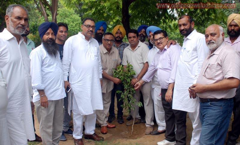 कनाडा के ब्रहमटन सैंट्रल से सांसद रमेश संघा लुधियाना में पवन दीवान व अन्य के साथ पौधारपण करते हुए