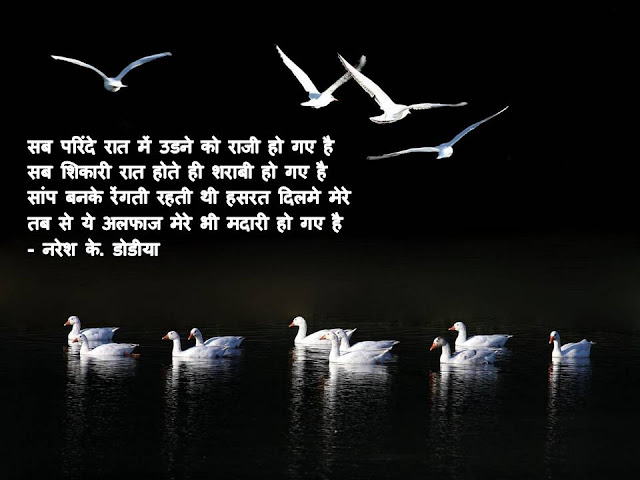 सब परिंदे रात में उडने को राजी हो गए है  Hindi Muktak By Naresh K. Dodia