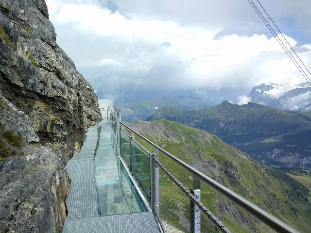 Мост из стекла и плотной сетки