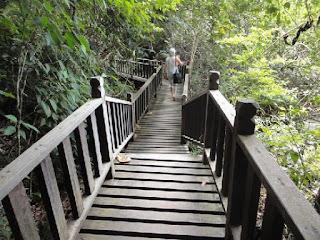 cara menuju ke tempat Wisata di Taman Negara Penang Malaysia