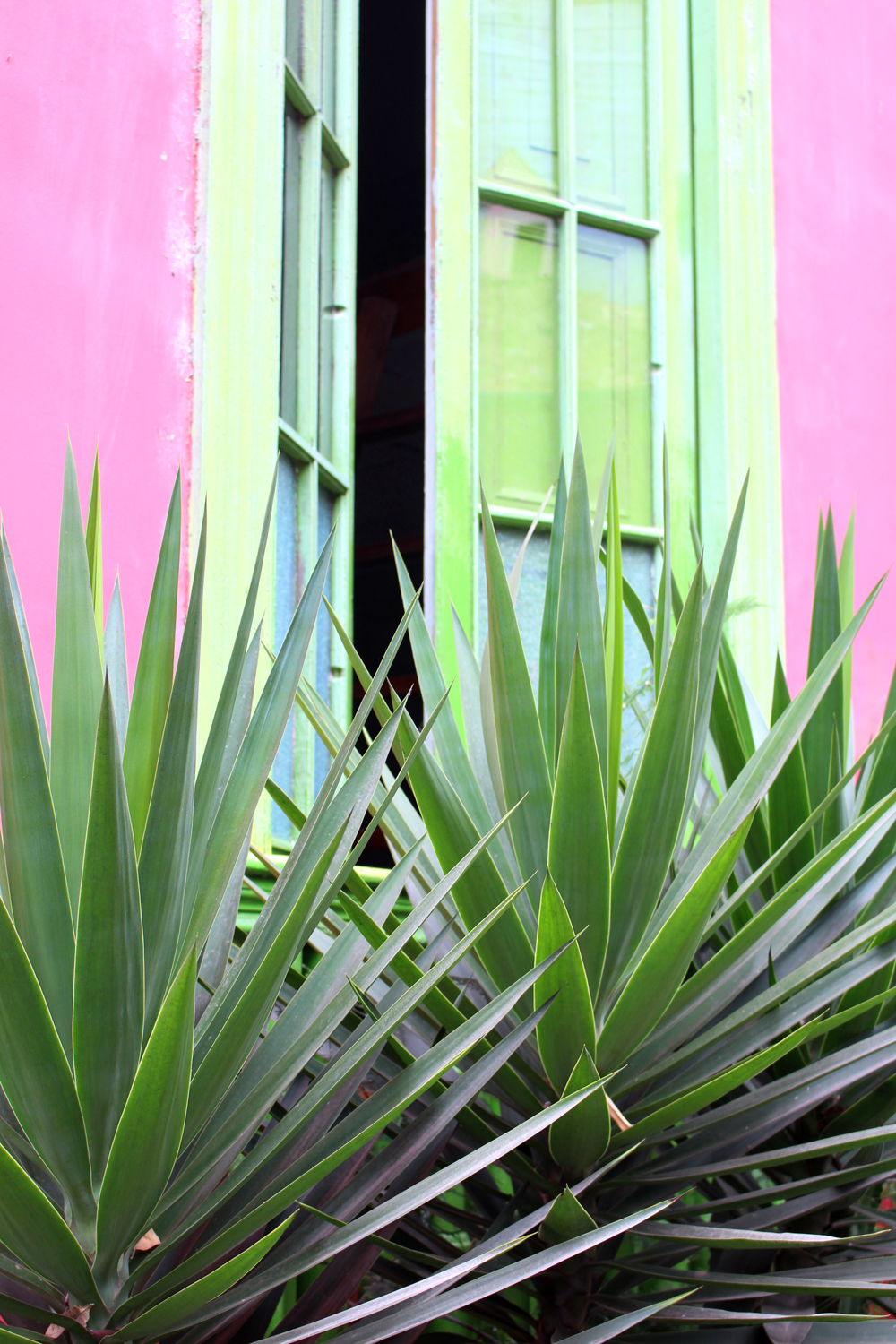 Palms and colourful windows in Miraflores in Lima, Peru - travel blog