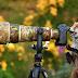 Фотограф із лісу