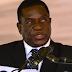Zimbabwe's Robert Mugabe Fires Vice President