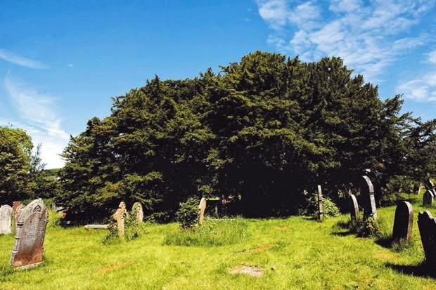 date debut neolithique