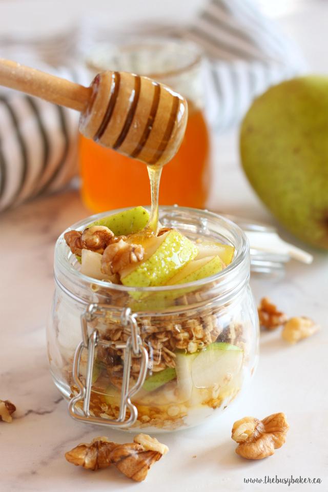 Healthy Fruit, Yogurt, and Granola Parfaits - 3 ways! Recipes from www.thebusybaker.ca