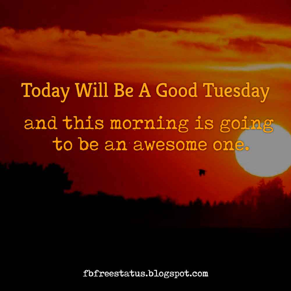 Today will be a good Tuesday, and this morning is going to be an awesome one.