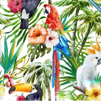 Aves tropicales de variados colores y especies.