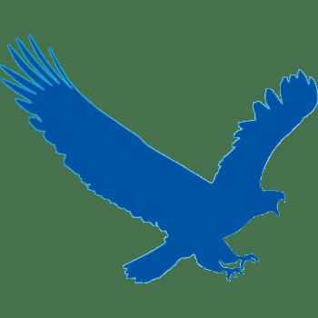 EagleGet 2.0.4.0 Stable Terbaru Gratis