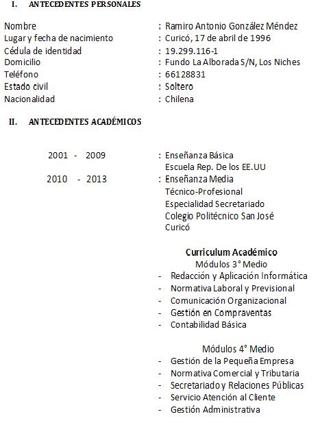 Redaccion Y Aplicacion De La Informatica Curriculum Vitae Y