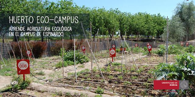 Sorteo de 44 parcelas para el cultivo ecológico.