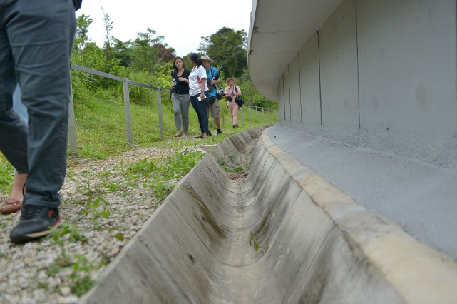 Visitors will use only a small pathway at the side of the bridge