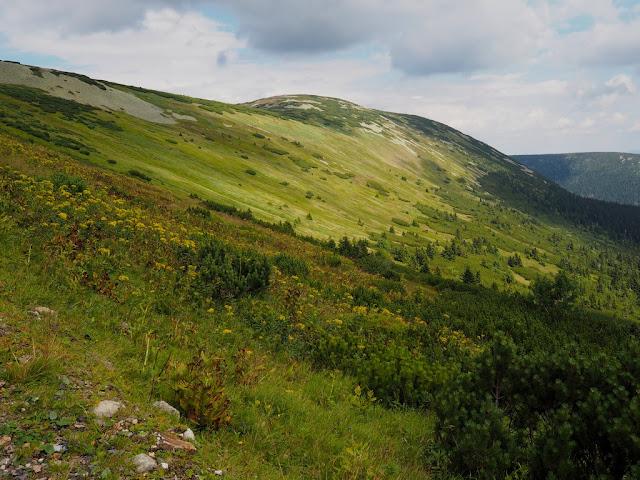 Příroda, Výrovka, Krkonoše, trek, procházka