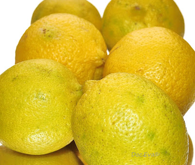 Citrus × limon