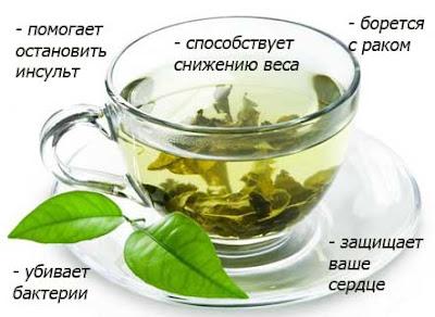 300 мл зеленого чая;
