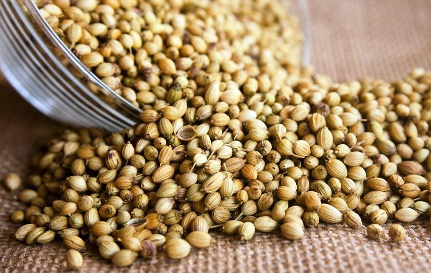 Manfaat Ketumbar, Nutrisi Dan Efek Sampingnya