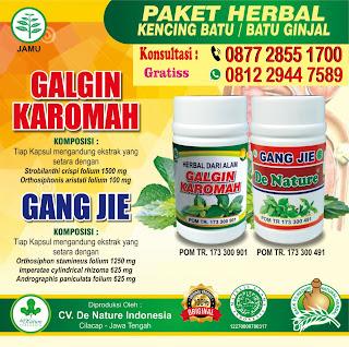 obat herbal kencing batu yang mujarab terbuat dari bahan herbal