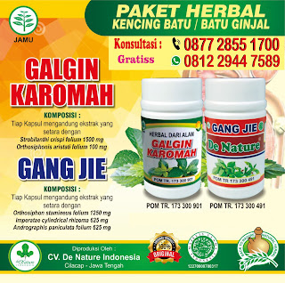 Cara alami untuk menghilangkan penyakit batu ginjal dengan herbal