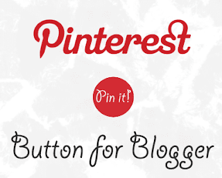 Add a Pinterest Pin It Mouseover Button on Blogger Images 1