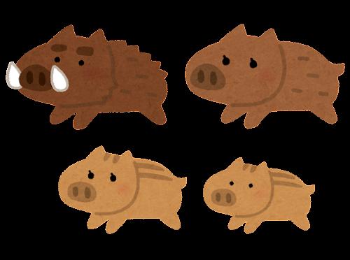 猪の家族のイラスト(亥年)