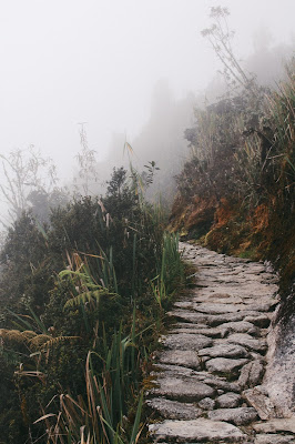 Trusting God on the straight and narrow path of life - foggy hillside path