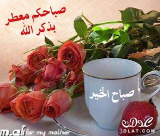 صباح الورد والياسمين 2020 , صور مكتوب عليها صباح الورد والياسمين , صباح الورد والفل والياسمين