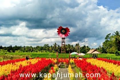 Belayu Florist Agro Tourism di Margarana Tabanan Bali