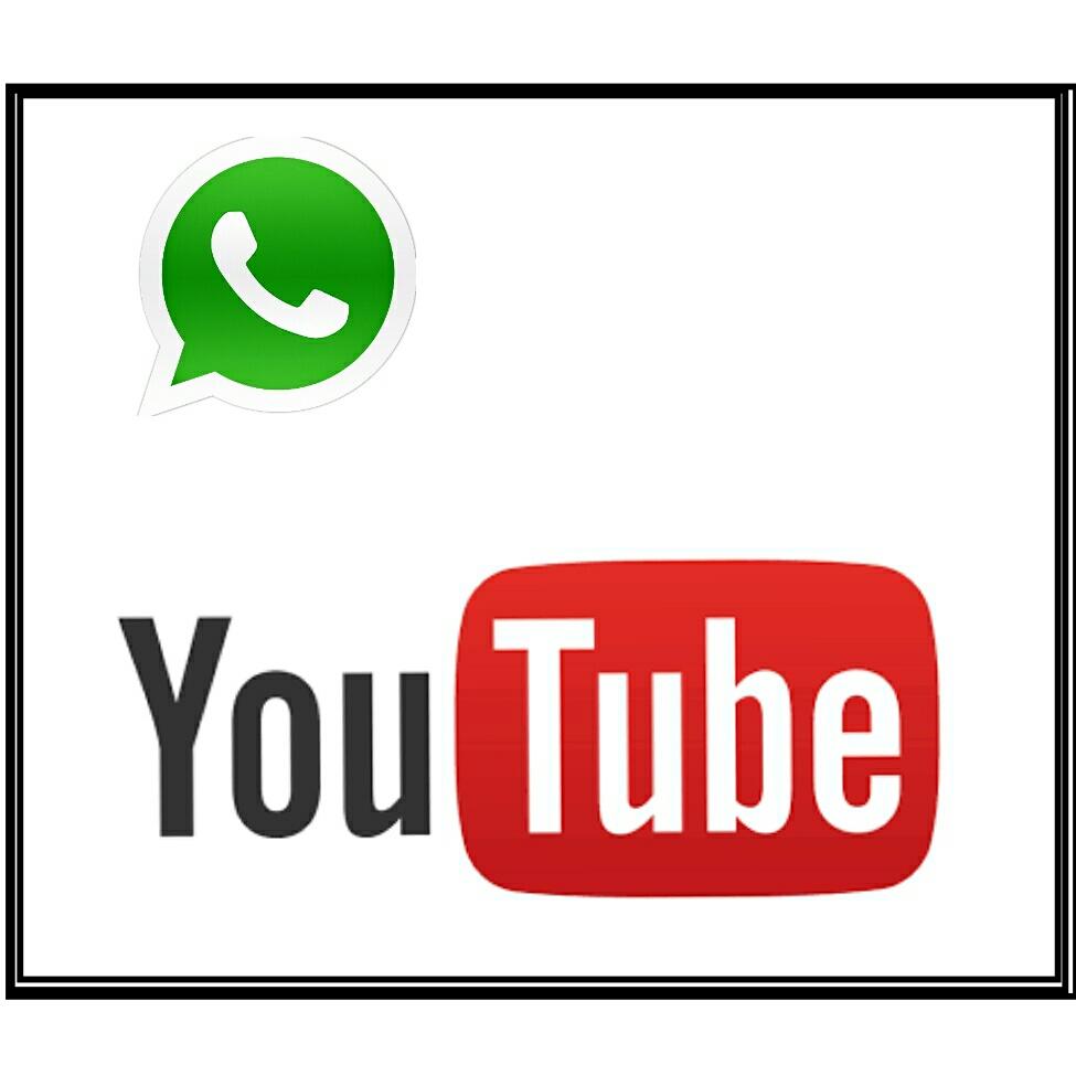 Cara Membagikan Video Youtube Ke Status Whatsapp Wa Info Android