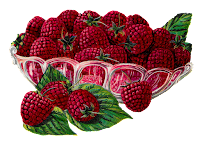 fruit raspberry berry image transfer illustration digital clipart