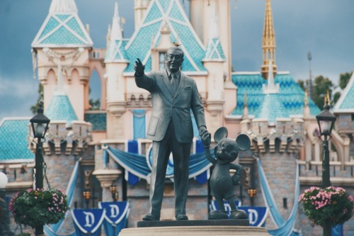 Delight-directed learning ideas for the Magic Kingdom #homeschooling