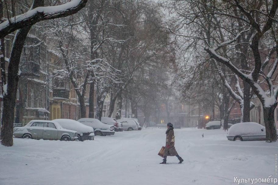 Член зимой