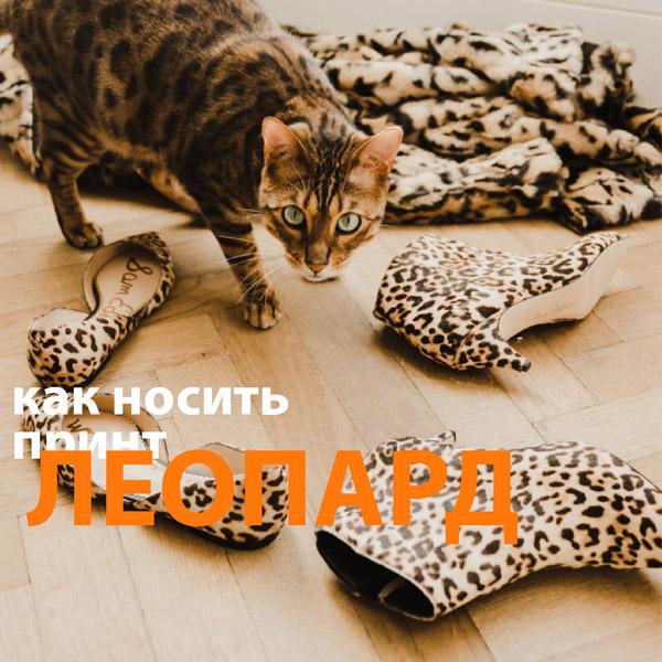 Как носить леопард и не выглядеть вульгарно