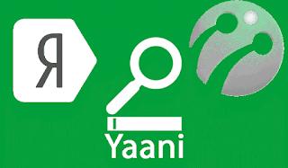 yaani-arama-motoru-yerli