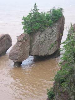 Hopewell Rocks High Tide.