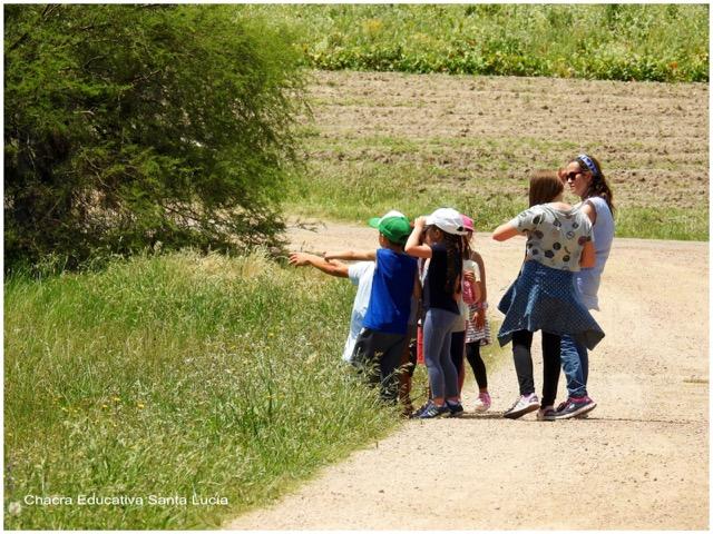 Observando plantas y aves en la recorrida de la Chacra - Chacra Educativa Santa Lucía