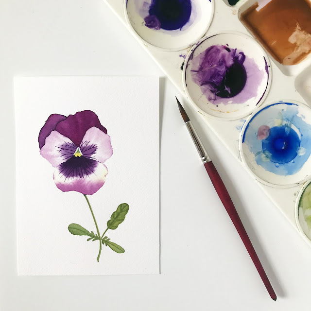 watercolor, botanical watercolor, floral watercolor, watercolor flowers, watercolor pansy, pansies, pansy painting, Anne Butera, My Giant Strawberry