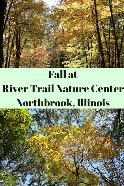 Fall colors at River Trail Nature Center in Northbrook, Illinois