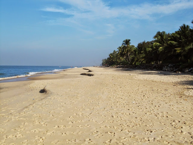 White sand beach in Alappey - Kerala