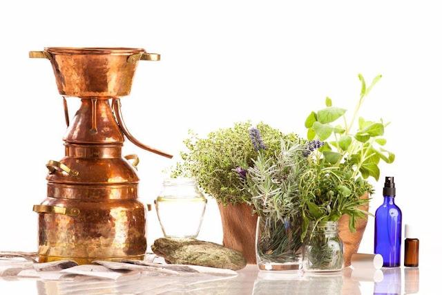 Comment faire un hydrolat, un macérat d'eau florale