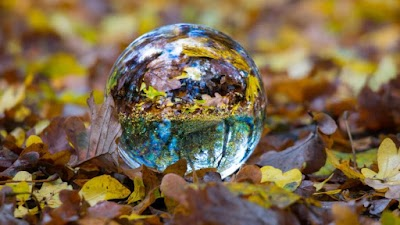 Glass Ball on Autumn Leaves