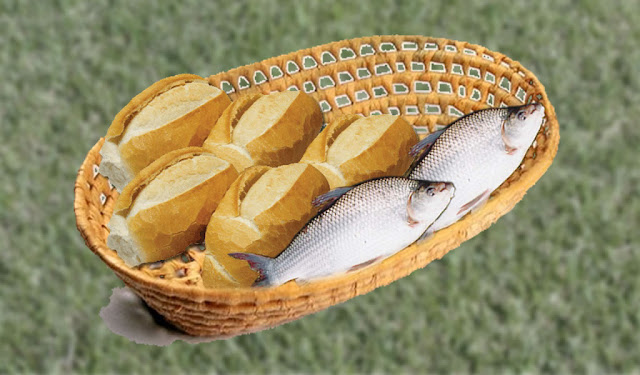Resultado de imagem para campanha 5 pães e 2 peixinhos